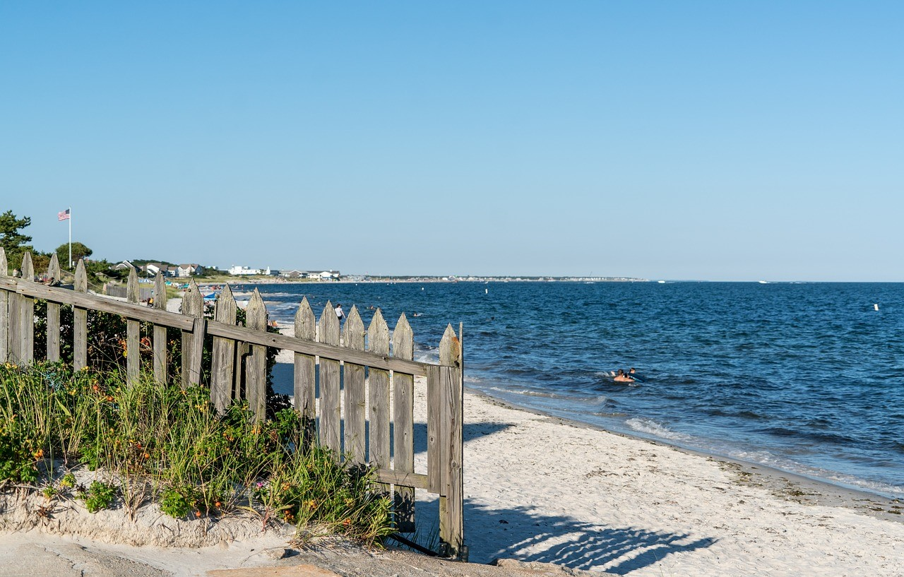 Day Trips Down the Cape